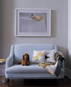 """Subdued Blue This velvet settee between two rooms is where this family kicks back while Mom cooks. The Binth """"Cuddle"""" pillows are designed to appeal to both children and adults. Act Home, Cuddle Pillow, Dog Couch, Blue Couches, Blue Loveseat, Blue Rooms, Settee, Decoration, Home Projects"""