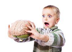 Bu Gıdalar Beyninizi Küçültüyor!