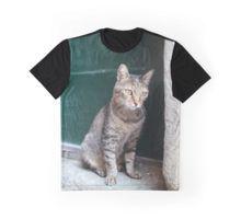 #Cats of #Riomaggiore #Italy #tshirt #art #photograph #fashion #redbubble