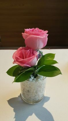 Pinky Rose always looked so gently and pretty
