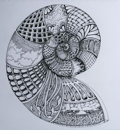 Sisters in Art: Nautilus Zentangle Doodles Zentangles, Zentangle Drawings, Zantangle Art, Zen Art, Doodle Patterns, Zentangle Patterns, Line Drawing, Drawing Art, Doodle Art