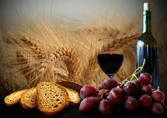 Wine__grape__bread_by_donnobru.jpg (900×636)