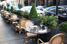 Planters outside restaurant