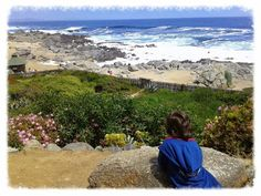 sonrisamaravillosa.blogspot.com: El Litoral de los Poetas