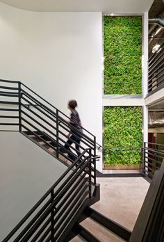 I've mentioned previously how great indoor plants are for our health, so now I'm going to discuss vertical living/green walls. Green walls can exist inside or o Living Fence, Garden Living, Living Walls, Wall Terrarium, Lobby Design, Green Architecture, Architecture Design, Plant Wall, Indoor Garden