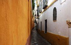 Seville-juderia-go-today.jpg