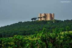 Twitter / viaggiarepuglia: Secondo #panoramatop per ... Castel Del Monte, Monument Valley, Cruise, Vacation, History, Twitter, Photography, Travel, Ship