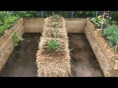 Straw Bale Gardening with an RS Combo - YouTube