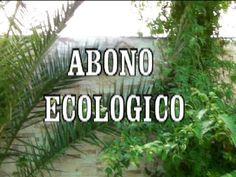 DIY ABONO ECOLOGICO - YouTube
