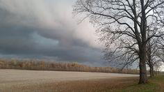 A month from Winter. Photo courtesy of Carla Pautler. Randolph County, IL. #randolphcountyil