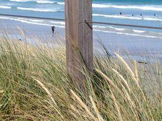 main beach Port Fairy      photo by jadoretotravel