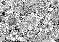 Flower Mania   Flickr - Photo Sharing!