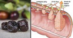 Toto sušené ovocie dramaticky znížilo riziko rakoviny hrubého čreva