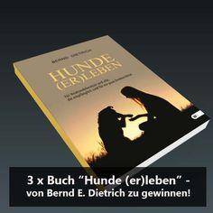 """2. Dezember – Gewinne eins von drei Büchern """"Hunde (er)leben"""" Von Bernd E. Dietrich"""