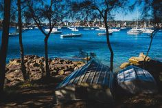 Sydney - Manly to Spit Bridge Coastal Walk. A picture from the #Manly to Spit Bridge scenic walk. This walk is perfect for winter time, not too crowded and offering some stunning views along the 10km of coast it follows... Sydney Photography, Stunning View, Winter Time, Be Perfect, Crowd, Coastal, Bridge, Backpack, Nerd