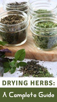 Healing Herbs, Medicinal Plants, Herb Drying Racks, Dehydrator Recipes, Herbs Indoors, Growing Herbs, Edible Flowers, Herbal Medicine, Gardens