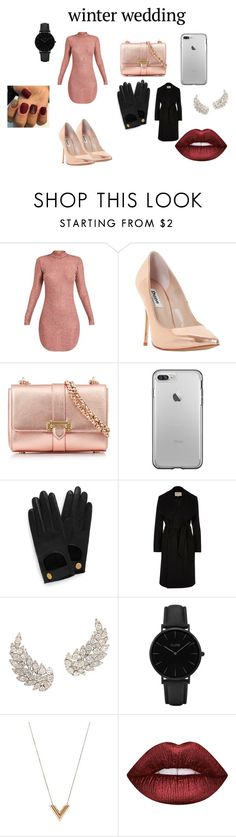 """Untitled #126"" by queenniyniy on Polyvore featuring Dune, Aspinal of London, Mulberry, River Island, CLUSE, Louis Vuitton and Lime Crime"