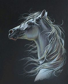 Beautiful horse painting, or possible drawing in pastels. High spirited horse looks amazing.