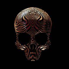 skull art - Artist Billy Bogiatzoglou has taken skull art to a new level. By engraving the motifs of ancient art onto replicas of skulls in swirling, metallic . Skull Decor, Skull Art, Gold Skull, Crane, Street Art, Harley Davison, Les Religions, Damien Hirst, Skull And Bones