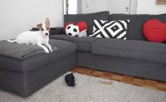 Living in Lisbon | Roma makes himself comfy on Vanessa's KIVIK sofa | live from IKEA FAMILY