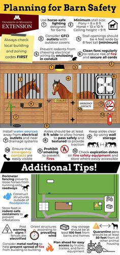 Horse Shelter, Horse Stables, Horse Farms, Horse Paddock, Horse Farm Layout, Barn Layout, Small Horse Barns, Horse Barn Designs, Horse Barn Plans