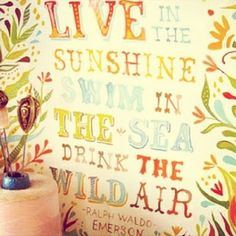 Live in the Sunshine