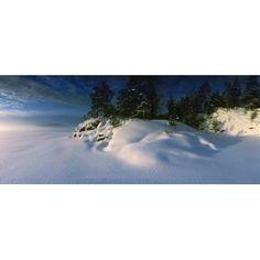 Trees along a frozen lake Saimaa Puumala Southern Savonia Eastern Finland Finland Canvas Art - Panoramic Images (36 x 12)