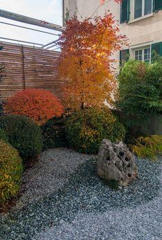 Japanese-Courtyard-Garden-autumn-leaves-Reffert2