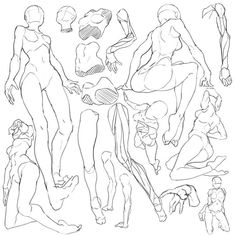 Pin by nattapong jatapai on anatomy art reference, anatomy sketches, figure Anatomy Sketches, Anatomy Art, Anatomy Drawing, Drawing Sketches, Art Drawings, Drawing Drawing, Drawing Tips, Human Figure Drawing, Figure Drawing Reference