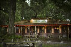 719 best gainesville florida and alachua county images university rh pinterest com