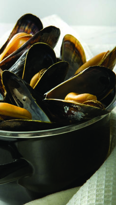 Sizzling Mussels in Exotic Broth