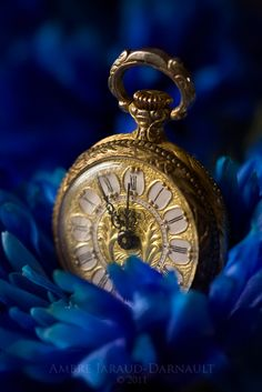 Blue & gold the colors go together very well & blue is a very regal color (that, & the pocket watch is perf) ~Jena Old Clocks, Antique Clocks, Antique Watches, Cobalt Blue, Blue Yellow, Green, Navy Blue, Bleu Indigo, Father Time