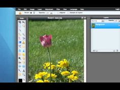 Pixlr: Clone Stamp Tool