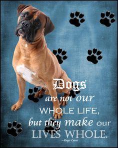 Instant Download  8x10 Boxer Dog Digital Print.. $4.50, via Etsy.