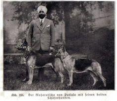 Maharaja Of Patiala By Rohit Sonkiya