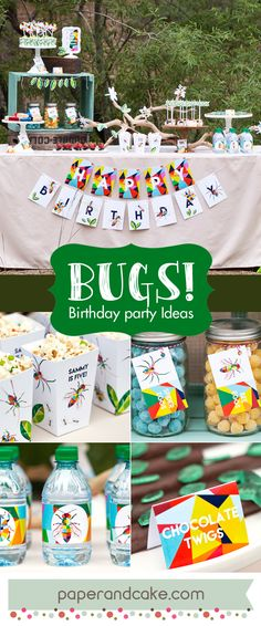 Bug and Insect Birthday party ideas from Paper and Cake