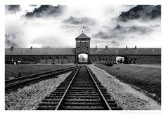 7) Racisme en discriminatie die leidden tot genocide, in het bijzonder op de joden (Holocaust)