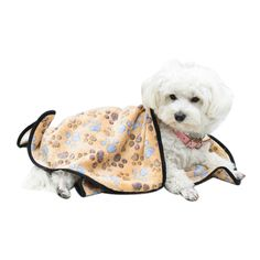 EXPAWLORER Pet Blanket for Small Cats and Dogs Thick * To view further for this item, visit the image link. (This is an Amazon affiliate link)