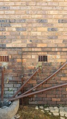 Bee removal in Johannesburg removed beer in air brick in Alberton