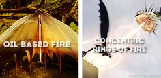 — queenelinor: how to train your dragon: types of. Httyd Dragons, Dreamworks Dragons, Hiccup And Toothless, Hiccup And Astrid, Disney Dragon, Dragon Movies, Beautiful Dragon, Dragon Trainer, Wings Of Fire
