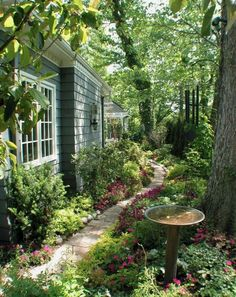 Beaty Small Backyard Landscape Designs für Ihren Garten More from my Stunning Small Backyard Designs Inspirational Backyard Landscape Designs As Seen From Stunning Small Cottage Garden Ideas for. Unique Garden, Small Garden Design, Lush Garden, Shade Garden, Big Garden, Summer Garden, Side Yard Landscaping, Landscaping Ideas, Landscaping Software