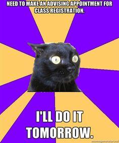 Anxiety Cat / Procrastination Cat