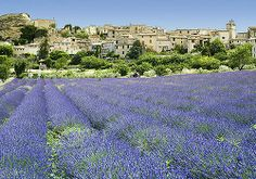 Country Trails of Provence, France