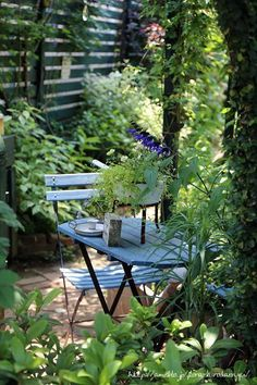 Nora京子さん庭へ の画像|フローラのガーデニング・園芸作業日記