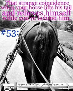 """Equestrian Problem #53      Submitted by:doilooklikeyourlia  """"[Horses] aren't very polite about their body emissions…"""" haha"""