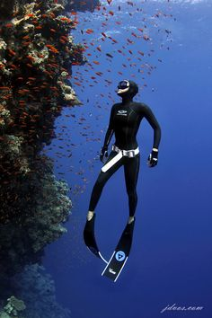 The Blue Hole - Dahab, Egypt #freediving