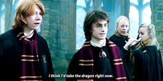 ron weasley harry potter * gifs goblet of fire hpgif hpedit made ...