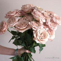 Diy Wedding Flowers, Diy Flowers, Flower Decorations, Wedding Bouquets, Flower Colors, Rose Flowers, Bridal Flowers, Flower Types, Luxury Flowers