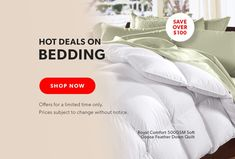 New Zealand Down Quilt, Sustainable Environment, Group Of Companies, Bedding Shop, New Zealand, Your Favorite, Healthy Living, Shop Now, Encouragement