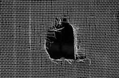 How to Repair Hole in window screen